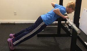 Elevated Push Up Barbell