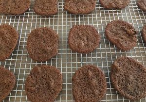 allergy friendly ginger cookies
